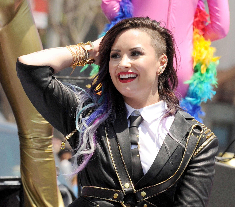 Demi Lovato Hair Extensions Demi Lovato Secret Color Extensions