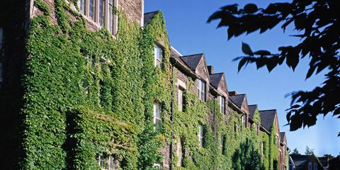 Photos of Bard College - Photos of Bard Campus & Students