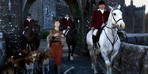 Human, Vertebrate, Bridle, Horse supplies, Horse, Horse tack, Rein, Halter, Dog breed, Working animal,