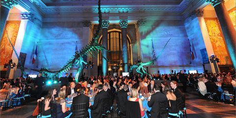 """On April 18th, the Museum of Natural History hosted their Annual Museum Dance—always a wild affair! Dinner was served in the shadows of the dinosaurs and guests danced under the blue whale in the Hall of Ocean Life; an allied exhibition that takes advantage of the celebrity status of the museum's 94-foot-long female blue whale will be on display throughout the spring and is called """"Whales: Giant of the Deep."""""""