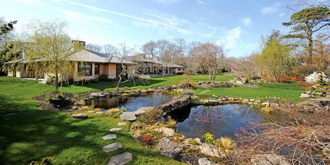 Plant, Natural landscape, Landscape, Tree, Garden, Pond, Land lot, House, Wetland, Lawn,