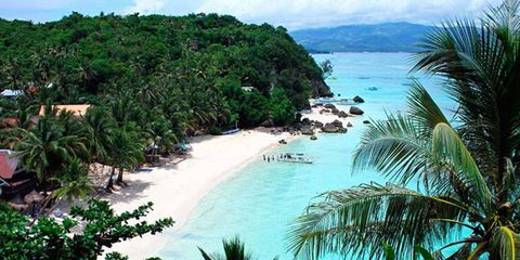 Body of water, Coastal and oceanic landforms, Tree, Coast, Ocean, Shore, Tropics, Caribbean, Bay, Beach,