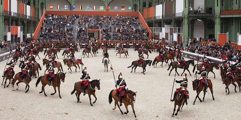 Clothing, Human, People, Horse, Vertebrate, Horse tack, Working animal, Halter, Rein, Horse supplies,