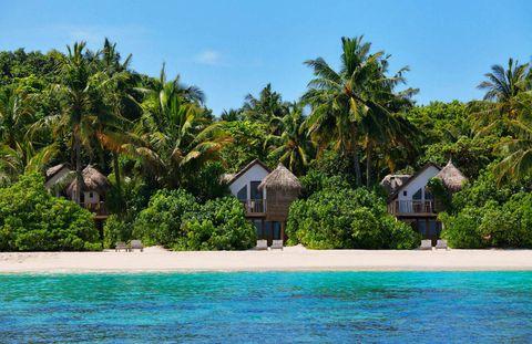 Coastal and oceanic landforms, Tree, Arecales, Resort, Woody plant, Tropics, Real estate, Aqua, Azure, Caribbean,