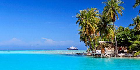 Body of water, Coastal and oceanic landforms, Water, Ocean, Aqua, Sea, Arecales, Island, Caribbean, Turquoise,