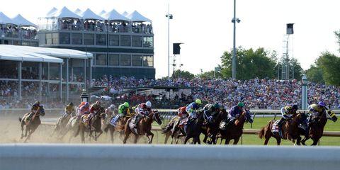 Human, Jockey, Animal sports, Sport venue, Horse, Horse tack, Rein, Halter, Flat racing, Bridle,
