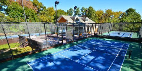 Grass, Tiger, Swimming pool, Majorelle blue, Shade, Street light, Felidae, Yard, Big cats, Backyard,