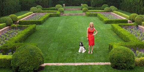 Grass, Shrub, Plant, Garden, Green, Hedge, Carnivore, Dress, People in nature, Park,