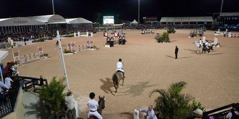 Sport venue, Mammal, Soil, Motorcycle, Horse, Animal sports, Mare, Horse tack, Stallion, Floodlight,
