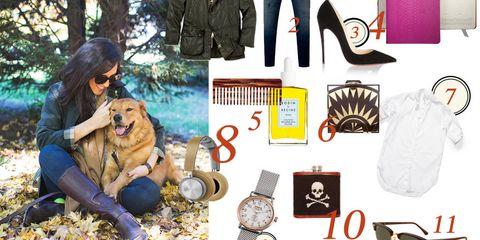 Eyewear, Dog breed, Textile, Carnivore, Dog, Sunglasses, Companion dog, Bag, Jacket, Goggles,