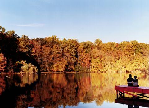 Nature, Reflection, Natural landscape, Leaf, Bank, Loch, Watercourse, Reservoir, Autumn, Deciduous,