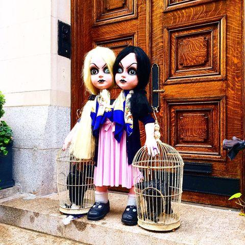Toy, Doll, Door, Wig, Flowerpot, Figurine, Artificial hair integrations, Varnish, One-piece garment, Home door,
