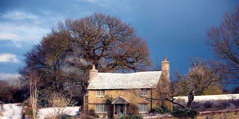 Branch, House, Rural area, Home, Roof, Village, Cottage, Farmhouse, Paint, Snow,