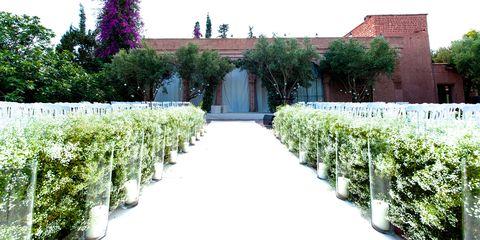 Plant, Shrub, Garden, Hedge, Door, Groundcover, Plantation, Landscaping, Botanical garden, Aisle,