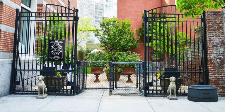 Best pet friendly hotels in new york city hotels that for Dog friendly hotels in nyc