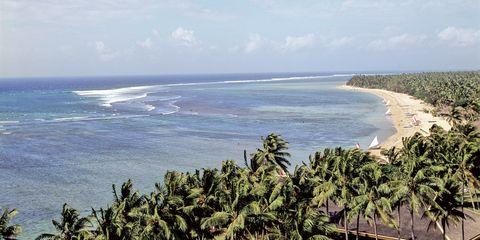 Body of water, Vegetation, Coastal and oceanic landforms, Natural environment, Coast, Ocean, Shore, Beach, Woody plant, Tropics,