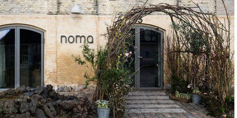 Plant, Flowerpot, Door, Fixture, Home door, House, Shrub, Arch, Houseplant, Annual plant,