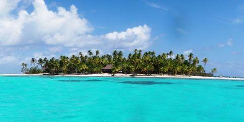 Body of water, Vegetation, Coastal and oceanic landforms, Sky, Natural environment, Cloud, Coast, Tree, Shore, Aqua,