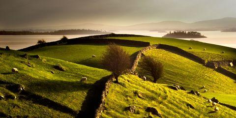 Grass, Natural landscape, Landscape, Hill, Highland, Grassland, Plain, Pasture, Field, Rural area,