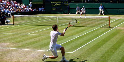 Sports equipment, Sport venue, Grass, Daytime, Racketlon, Elbow, Shoe, Tennis racket, Human leg, Tennis,