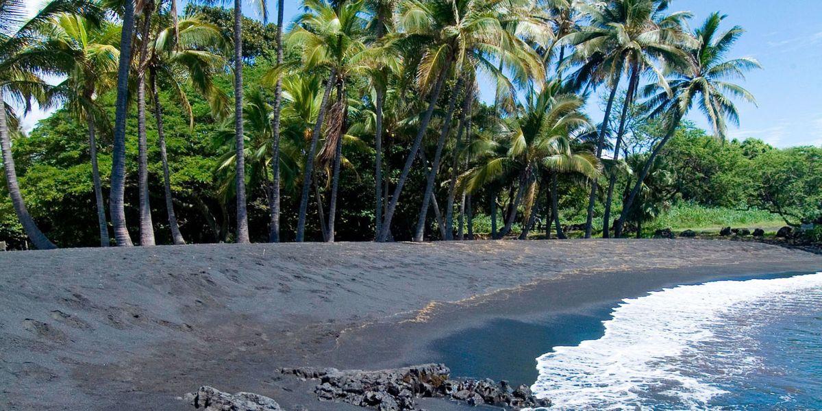 Hawaii Dept Of Labor Big Island