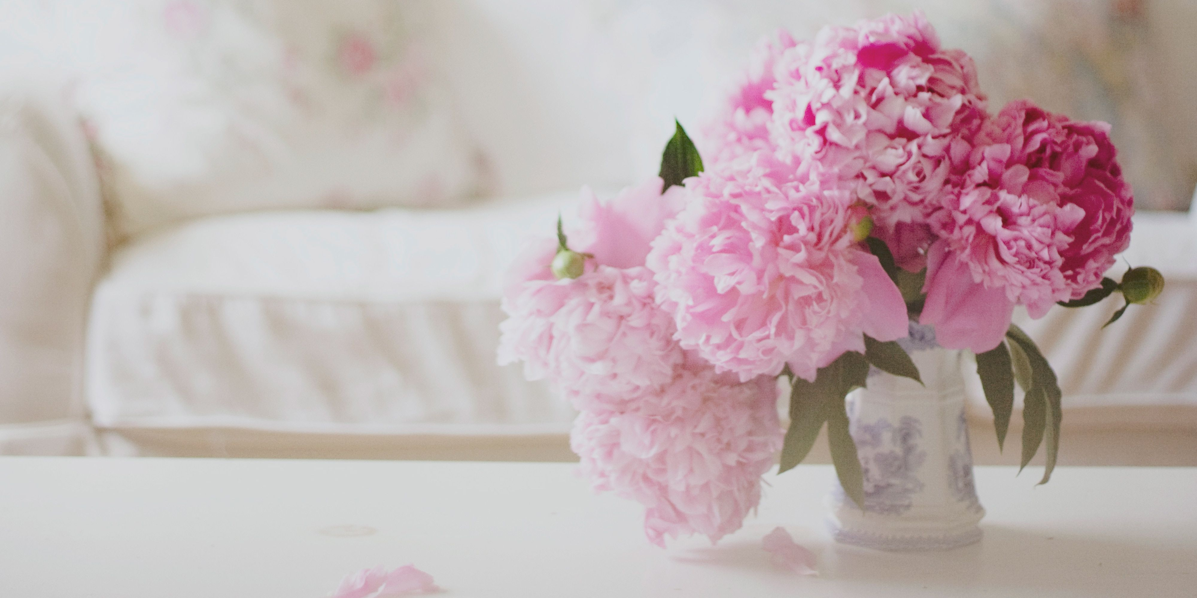 12 Facts About Peonies - History Of The Peony Flower