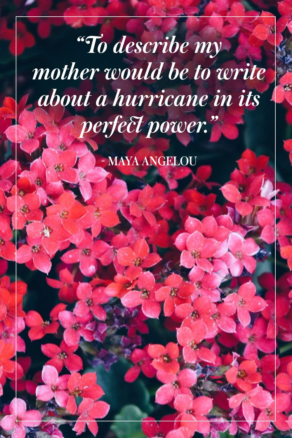 """""""To describe my mother would be to write about a hurricane in its perfect power."""" - Maya Angelou"""