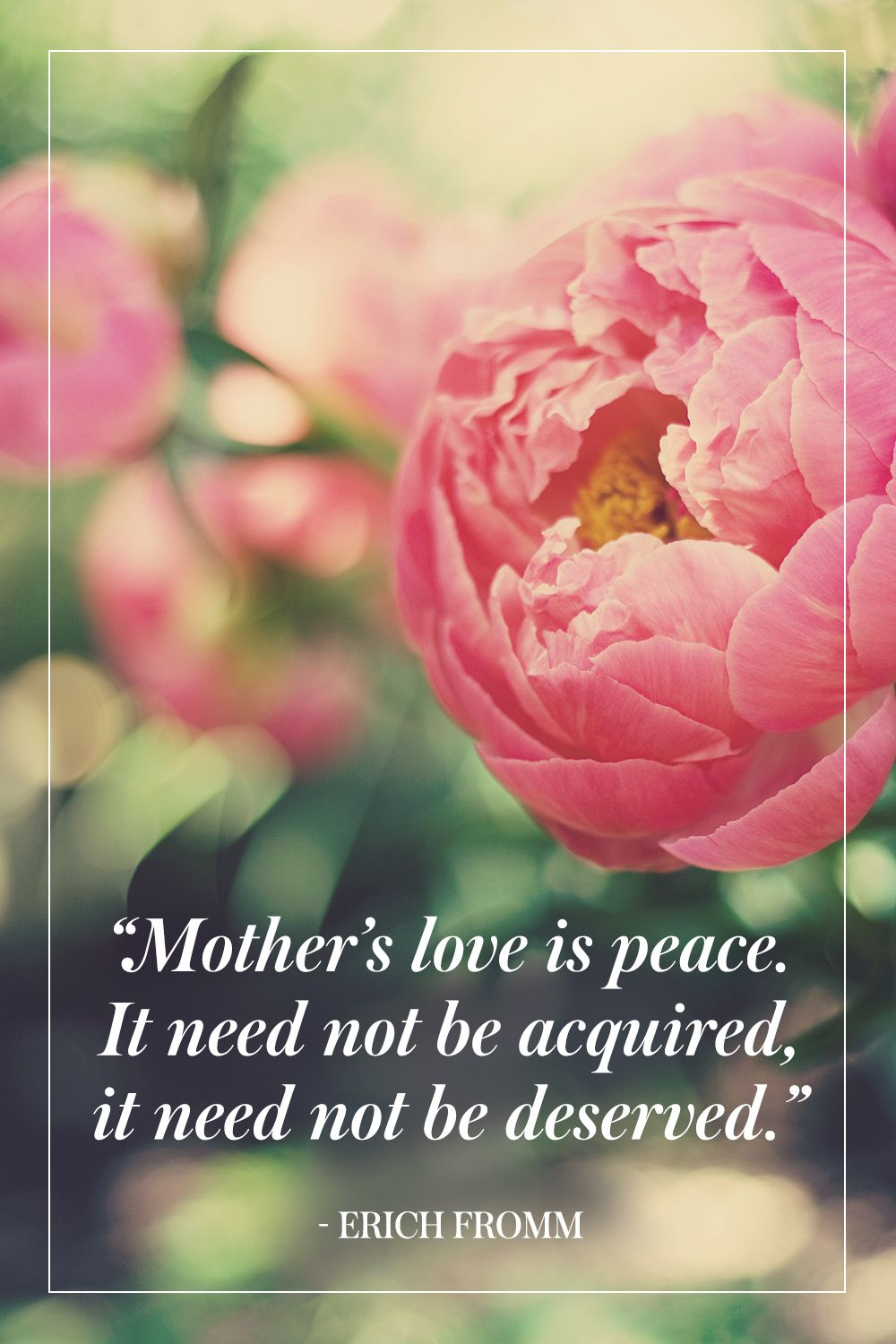 """""""Mother's love is peace. It need not be acquired, it need not be deserved."""" - Erich Fromm"""