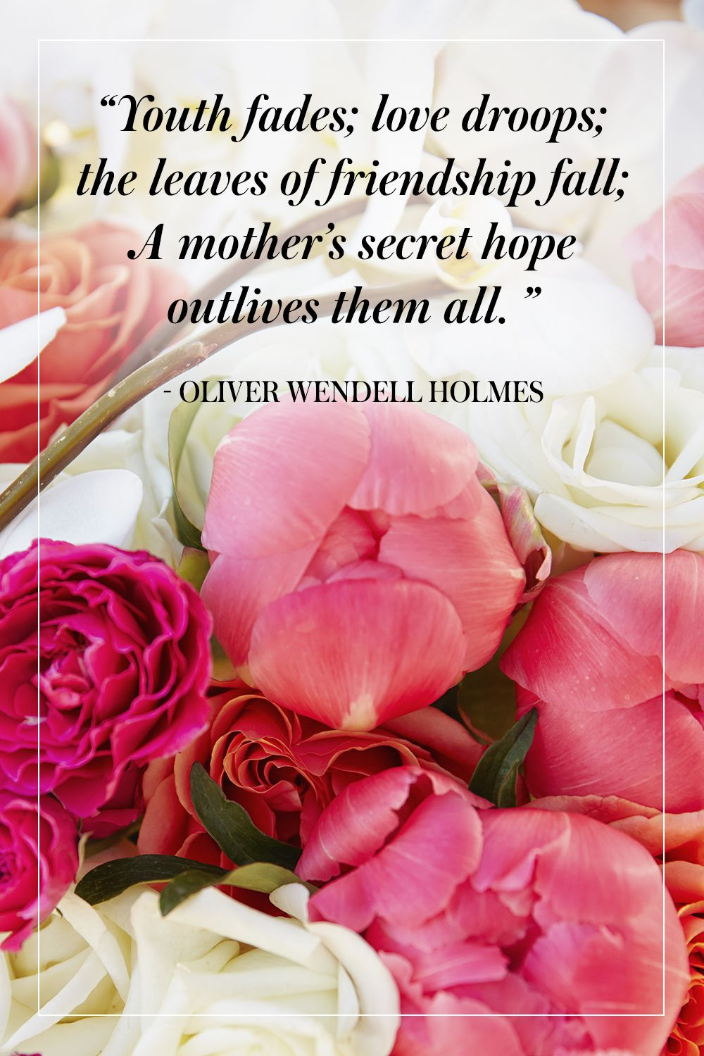"""""""Youth fades; love droops; the leaves of friendship fall; A mother's secret hope outlives them all."""" - Oliver Wendell Holmes"""