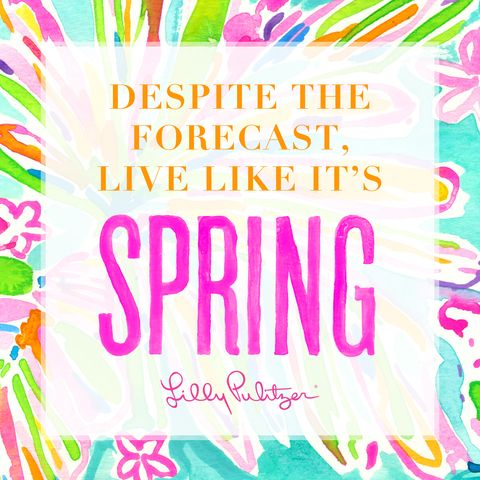 Best Lilly Pulitzer Quotes Custom Lilly Pulitzer Quotes