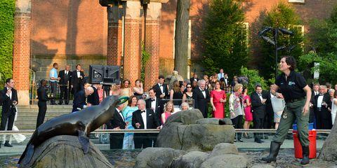Human, Marine mammal, Sculpture, Water feature, Shrub, Fountain, Cetacea, Column, Park, Bronze sculpture,
