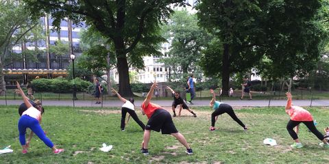 Tree, Leisure, Playing sports, Physical fitness, Active pants, Exercise, Training, Calf, Lawn, Park,