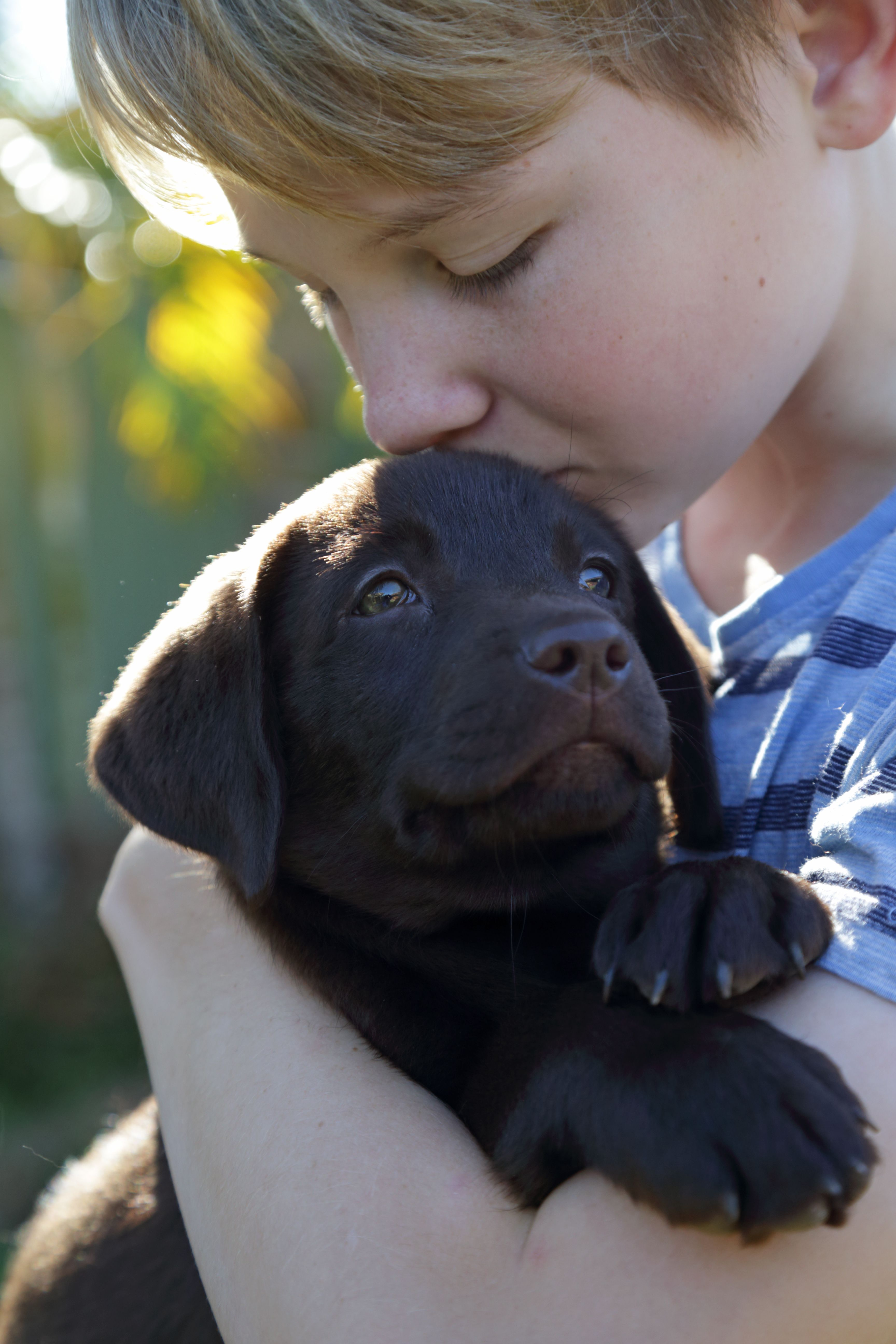 young boy giving puppy a kiss