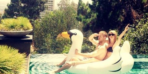 Leisure, Fluid, Summer, Flowerpot, Bird, Vacation, Water bird, Swimming pool, Waterfowl, Garden,