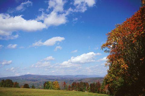 Nature, Sky, Natural landscape, Cloud, Leaf, Landscape, Hill, Plain, Land lot, Ecoregion,