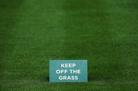Green, Grass, Natural environment, Text, Font, Grassland, Grass family, Groundcover, Lawn, Artificial turf,