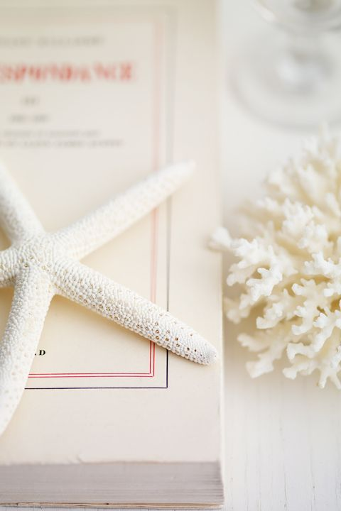 How To Decorate With Seashells Seashell Decorating
