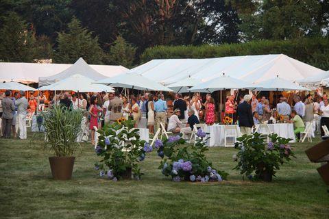 Flowerpot, Tent, Canopy, Shade, Floristry, Bouquet, Annual plant, Festival, Flower Arranging,