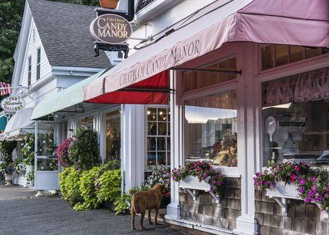 Flowerpot, Awning, Restaurant, Working animal, Door, Sidewalk, Floristry, Signage, Houseplant, Pack animal,