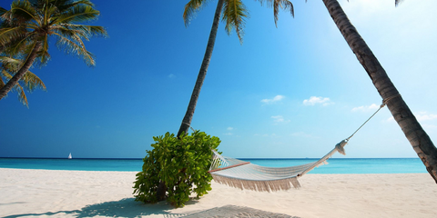 Body of water, Coastal and oceanic landforms, Sky, Shore, Coast, Ocean, Tree, Tourism, Beach, Arecales,