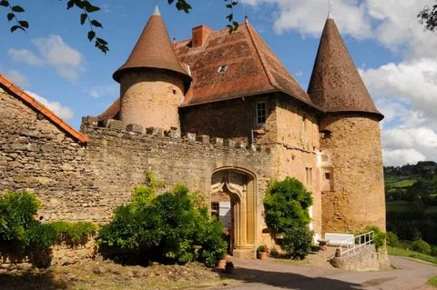 Plant, Property, Roof, House, Castle, Medieval architecture, Turret, Château, Middle ages, Historic site,