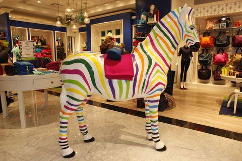 Lighting, Interior design, Interior design, Working animal, Shelf, Retail, Creative arts, Toy, Shelving, Ornament,