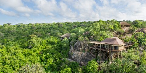 "<p>""High up on a river gorge in the Serengeti Plains, with eight tented rooms that disappear into the landscape. Incredible architecture throughout, including a pool built on a cliff-top where the views stretch into infinity. Activities include off-road game drives day and night. December through April, you're in the perfect spot to see migrating wildebeest herds."" <a href=""http://legendaryexpeditions.com"">From $2,500</a> (for two).</p><p>-Nina Wennersten and Dan Saperstein, Hippo Creek Safaris</p>"
