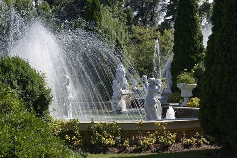 Vegetation, Fountain, Shrub, Garden, Water feature, Fluid, Botany, Park, Landscaping, Botanical garden,