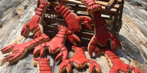 Carmine, Thumb, Clay, Bench, Toy, Toe,