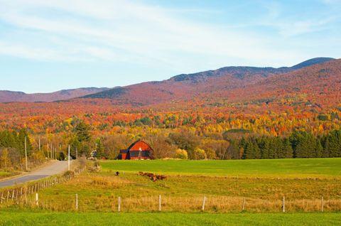 Farm, Mountainous landforms, Natural landscape, Agriculture, Landscape, Field, Land lot, Highland, Rural area, Plantation,