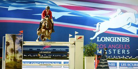 Vertebrate, Horse, Horse tack, Animal sports, Advertising, Equestrianism, Livestock, Bridle, Working animal, Rein,
