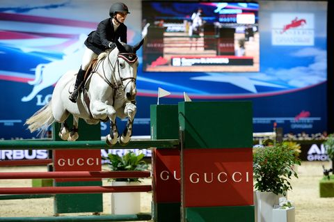 Show jumping, Jumping, Bridle, English riding, Vertebrate, Horse, Jumping, Equestrian sport, Horse tack, Animal sports,