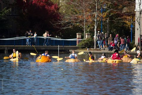 Recreation, Boats and boating--Equipment and supplies, Outdoor recreation, Oar, Canoeing, Endurance sports, Boating, Watercraft rowing, Watercraft, Paddle,