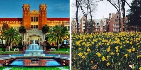 Nature, Plant, Property, Architecture, Facade, Real estate, Landmark, Woody plant, Garden, Petal,